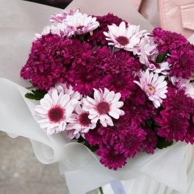 11 Ярких Хризантем фото