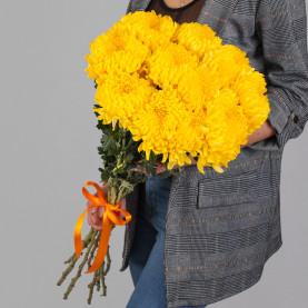 11 Желтых Хризантем Бигуди фото
