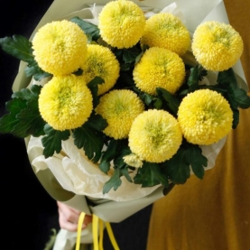 11 Желтых Хризантем Помпон фото