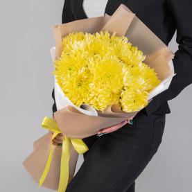 11 Желтых Игольчатых Хризантем фото