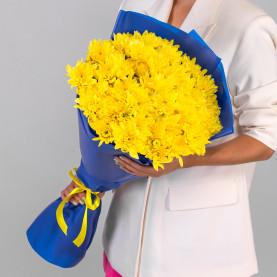 11 Желтых Кустовых Хризантем фото