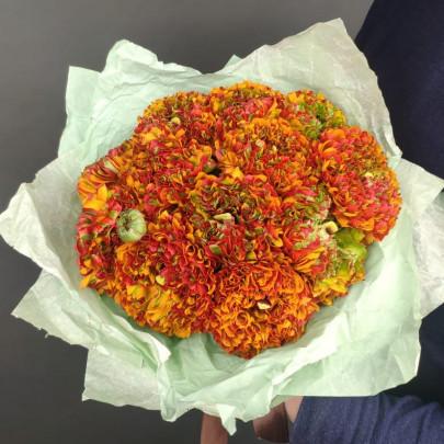 13 Оранжевых Махровых Ранункулюсов фото