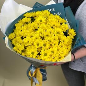 15 Жёлтых Кустовых Хризантем