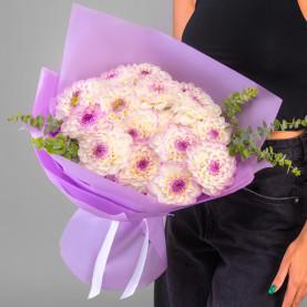 15 Бело-Фиолетовых Георгин фото