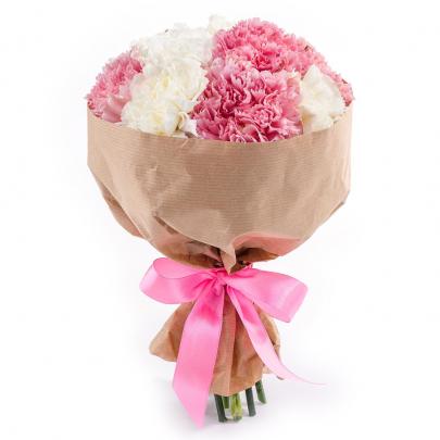 15 Бело-Розовых Гвоздик фото