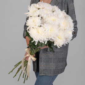 15 Белых Хризантем Бигуди фото