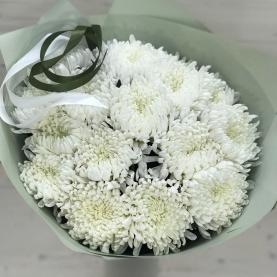 15 Белых Одноголовых Хризантем фото