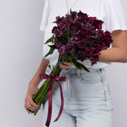 15 Фиолетовых Альстромерий фото