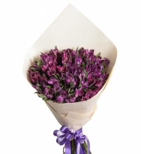 15 Фиолетовых Альстромерий