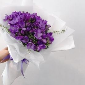 15 Фиолетовых Фрезий фото