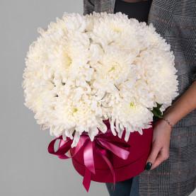 15 Белых Хризантем Бигуди в коробке фото