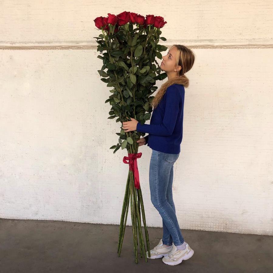 15 Красная Роза (180-200 см.) фото