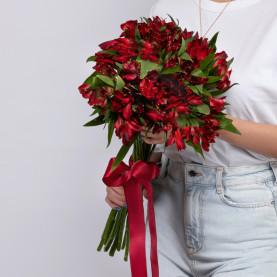 15 Красных Альстромерий фото
