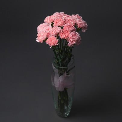 15 Розовых Гвоздик фото
