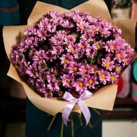 15 Розовых Хризантем фото