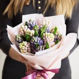 15 Розовых и Фиолетовых Гиацинтов фото