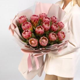15 Розовых Протей фото