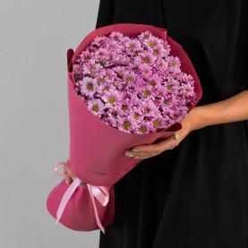 15 Розовых Сантини Ромашка фото