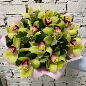 15 Зеленых Орхидей фото