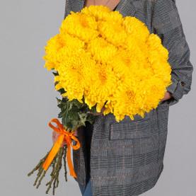 15 Желтых Хризантем Бигуди фото
