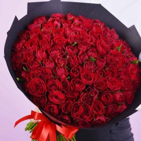 151 Красная Роза фото