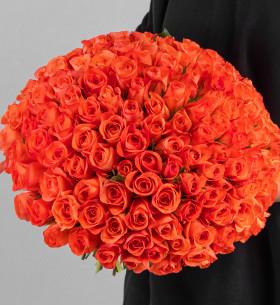 151 Ярко-Оранжевая Роза (30-40 см.) фото