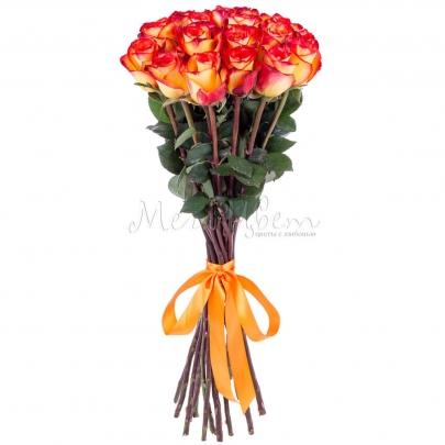 17 Оранжевых Роз Эквадор (70 см.) фото