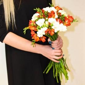 25 Белых и Оранжевых Фрезий фото