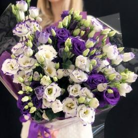 17 Фиолетово-Белых Эустом фото