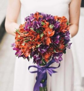17 Оранжево-Фиолетовых Альстромерий