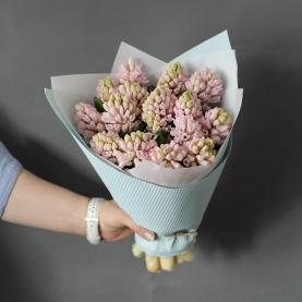 17 Розовых Гиацинтов фото