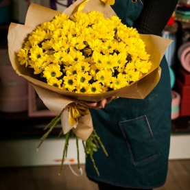 17 Желтых Хризантем фото