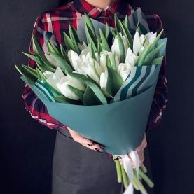 19 Тюльпанов белых фото