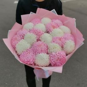 19 Белых И Розовых Хризантем Бигуди фото