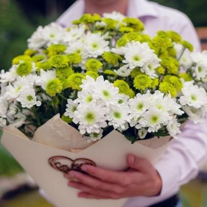 19 Кустовых Бело-Зеленых Хризантем