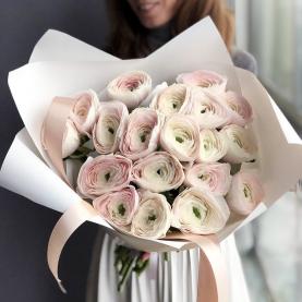 19 Нежно-Розовых Ранункулюсов фото