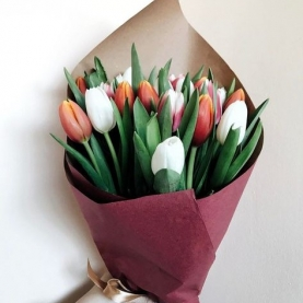 19 Тюльпанов Микс фото