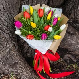 19 Тюльпанов с зеленью фото