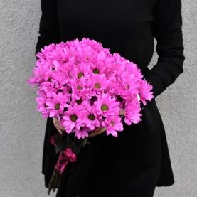 19 Розовых Хризантем фото