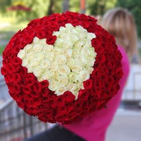 201 Красно-Белая Роза Сердце (50/60 см.) фото