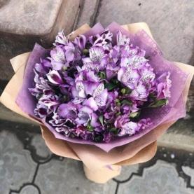 21 Фиолетовая Альстромерия фото