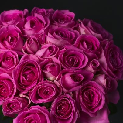 21 Розовая Роза фото