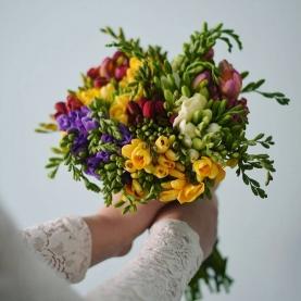 35 Разноцветных Фрезий фото
