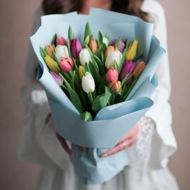 21 Разноцветный Тюльпан фото