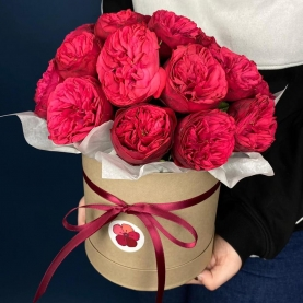21 Пионовидная Красная Роза в коробке фото