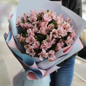 21 Розовая Альстромерия фото
