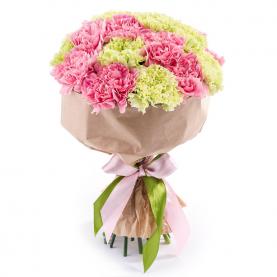 21 Зелено-Розовая Гвоздика фото