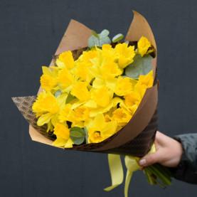 21 Желтый Нарцисс фото