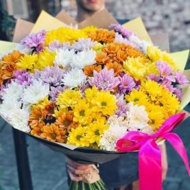 23 Разноцветные Кустовые Хризантемы фото