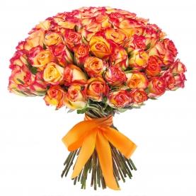 75 Оранжевых Роза фото